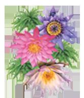 3-flower-footer-165